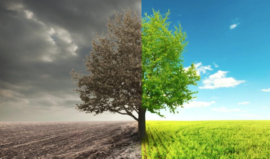 environment awareness